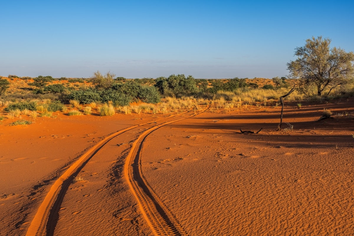 Rundfahrt bei der Kalahari Game Lodge